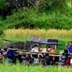 Pogrzeby u Torajów