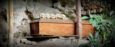 czaszki poukładane w jednym miejscu