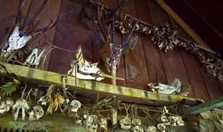 czaszki zwierząt w 'uma'
