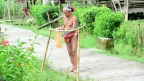 Wierzenia Mentawai