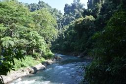 Park Gurung Leuser