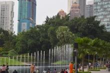 park jest bardzo zielony