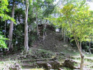 nieodkopana piramida w El Mirador